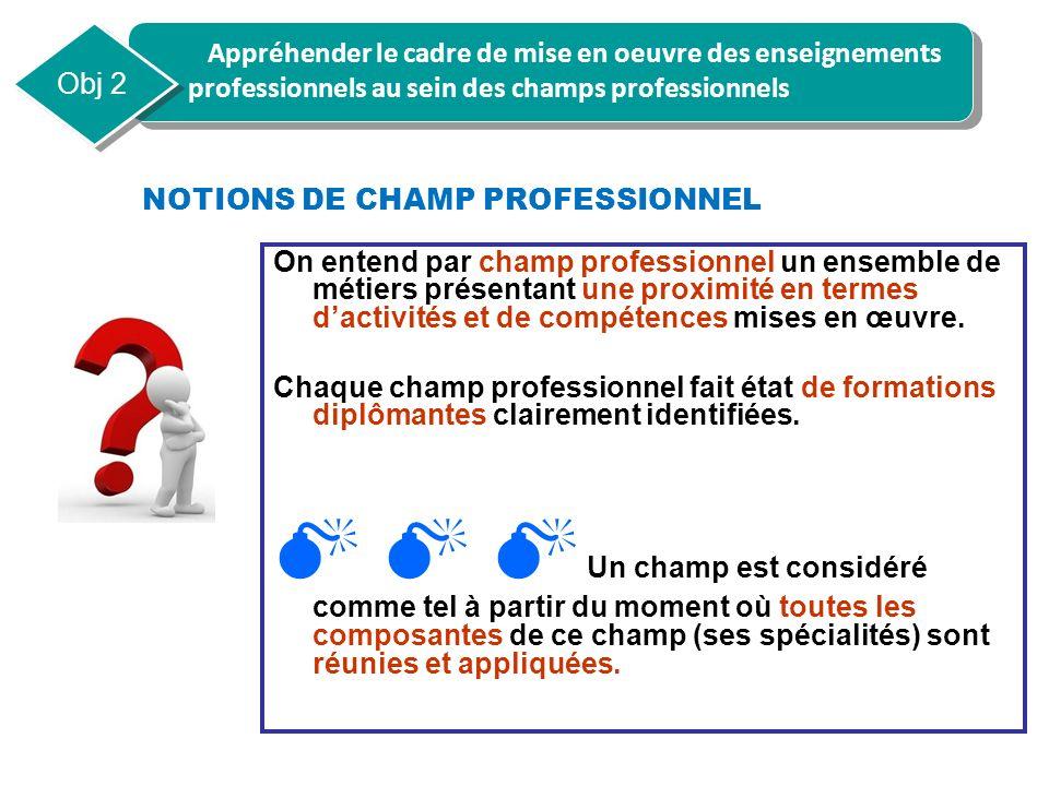 NOTIONS DE CHAMP PROFESSIONNEL