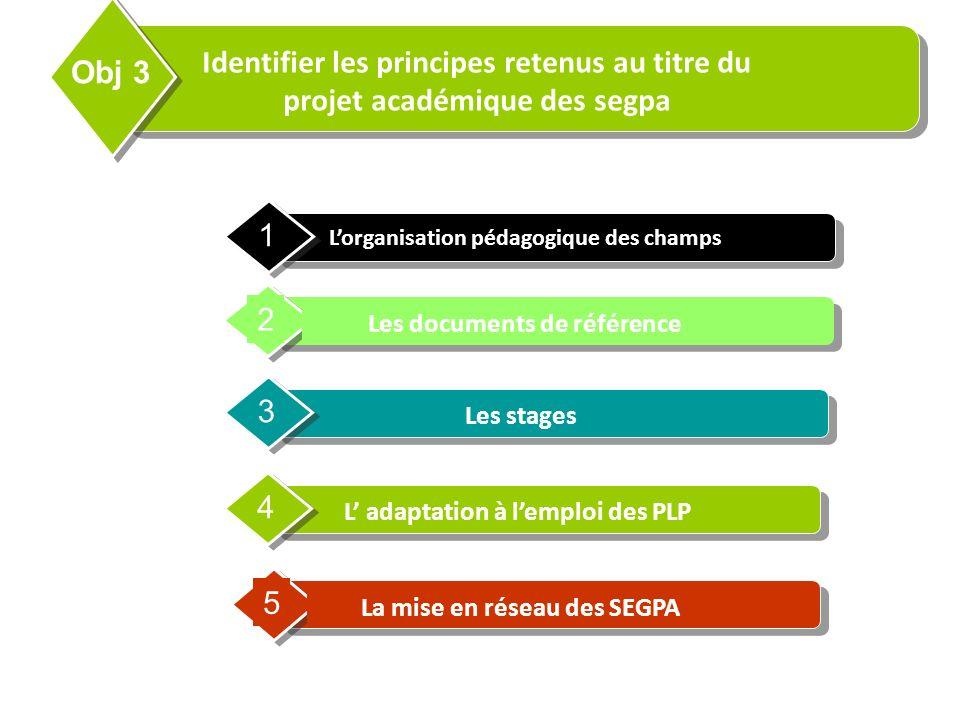 Contents Identifier les principes retenus au titre du projet académique des segpa. Obj 3. L'organisation pédagogique des champs.