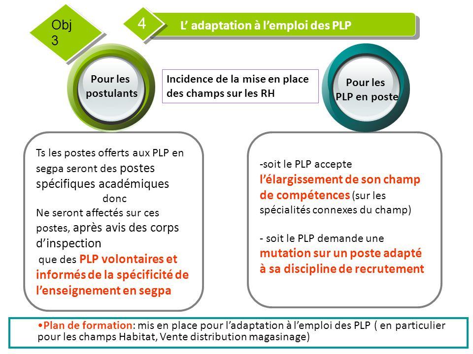 L' adaptation à l'emploi des PLP