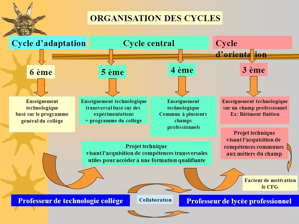 ORGANISATION DES CYCLES