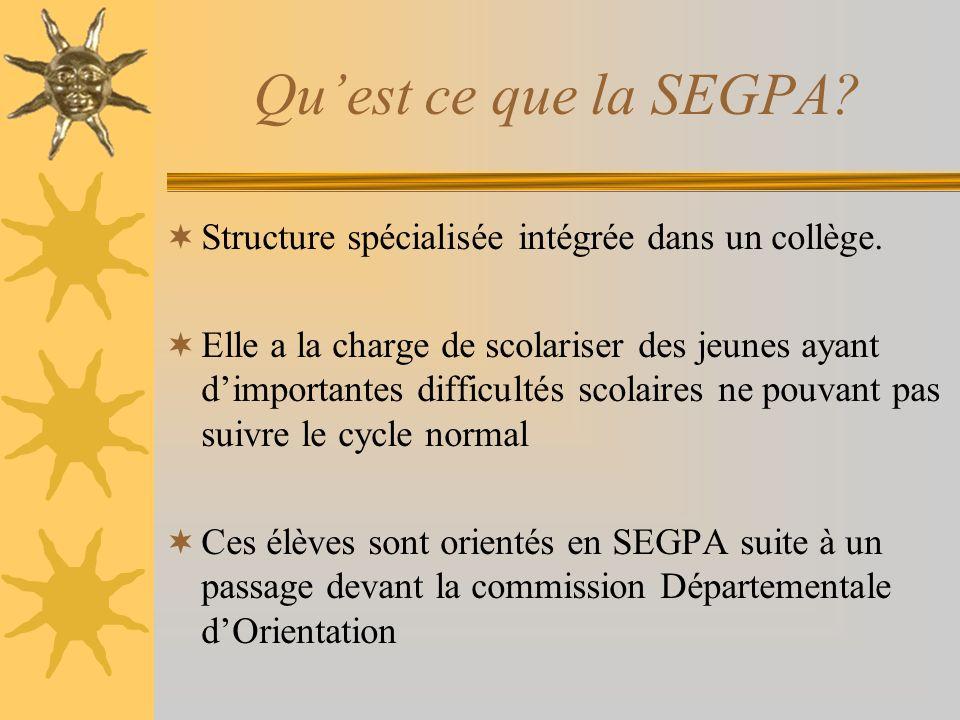 Qu'est ce que la SEGPA Structure spécialisée intégrée dans un collège.