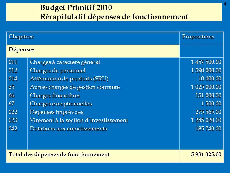 Budget Primitif 2010 Récapitulatif dépenses de fonctionnement