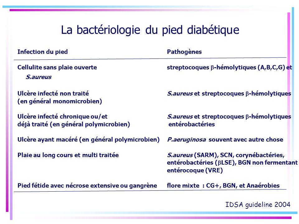 La bactériologie du pied diabétique