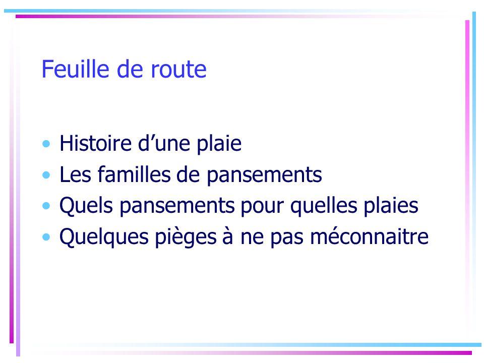 Feuille de route Histoire d'une plaie Les familles de pansements