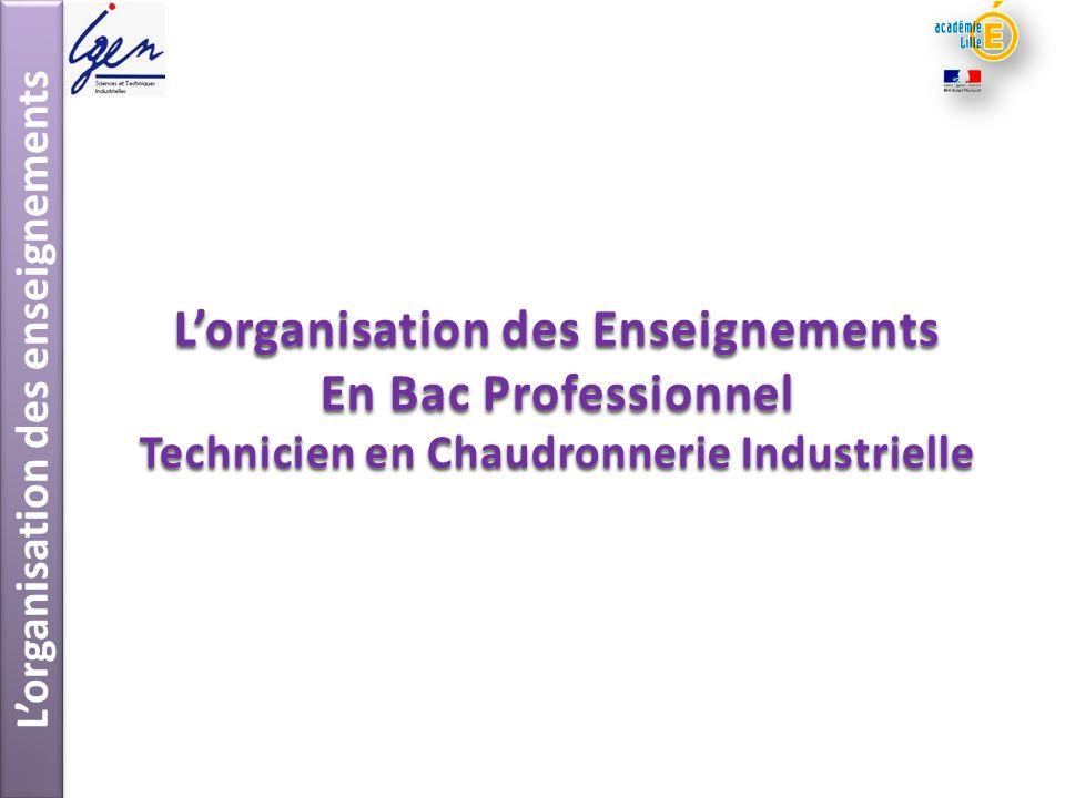 L'organisation des Enseignements En Bac Professionnel