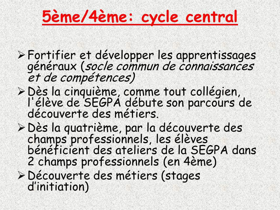5ème/4ème: cycle central