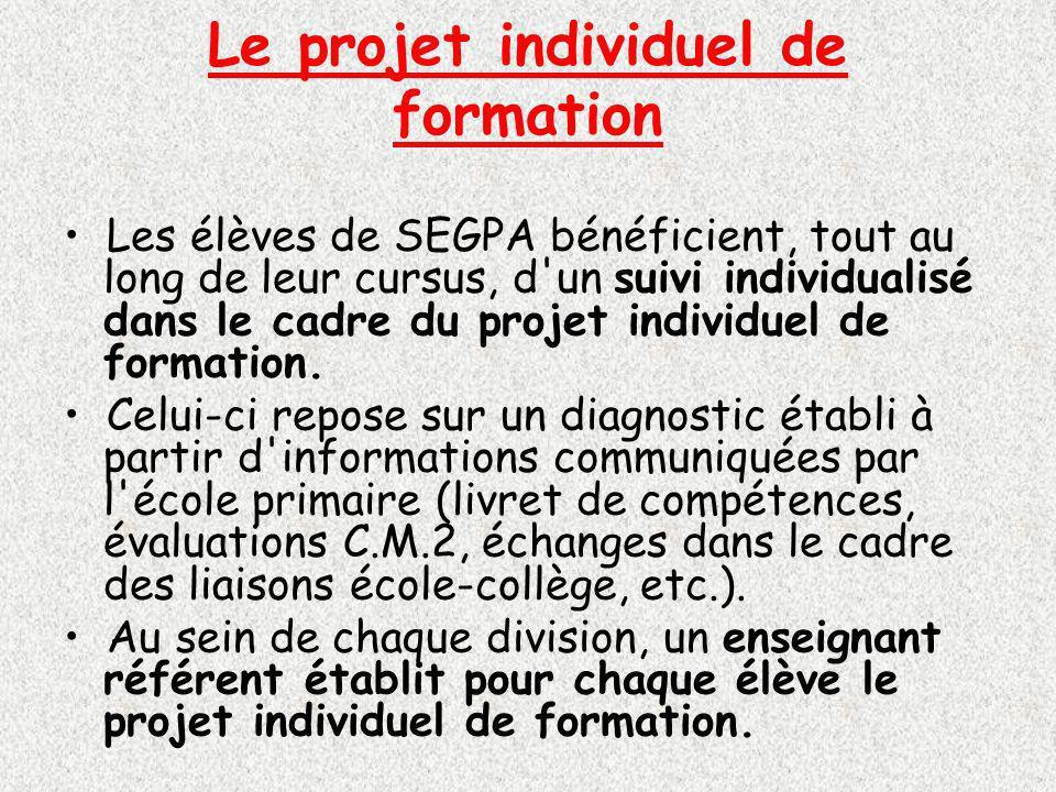 Le projet individuel de formation