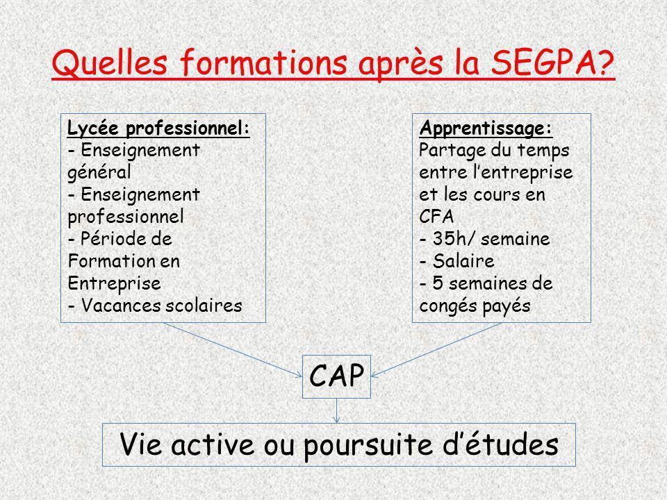 Quelles formations après la SEGPA