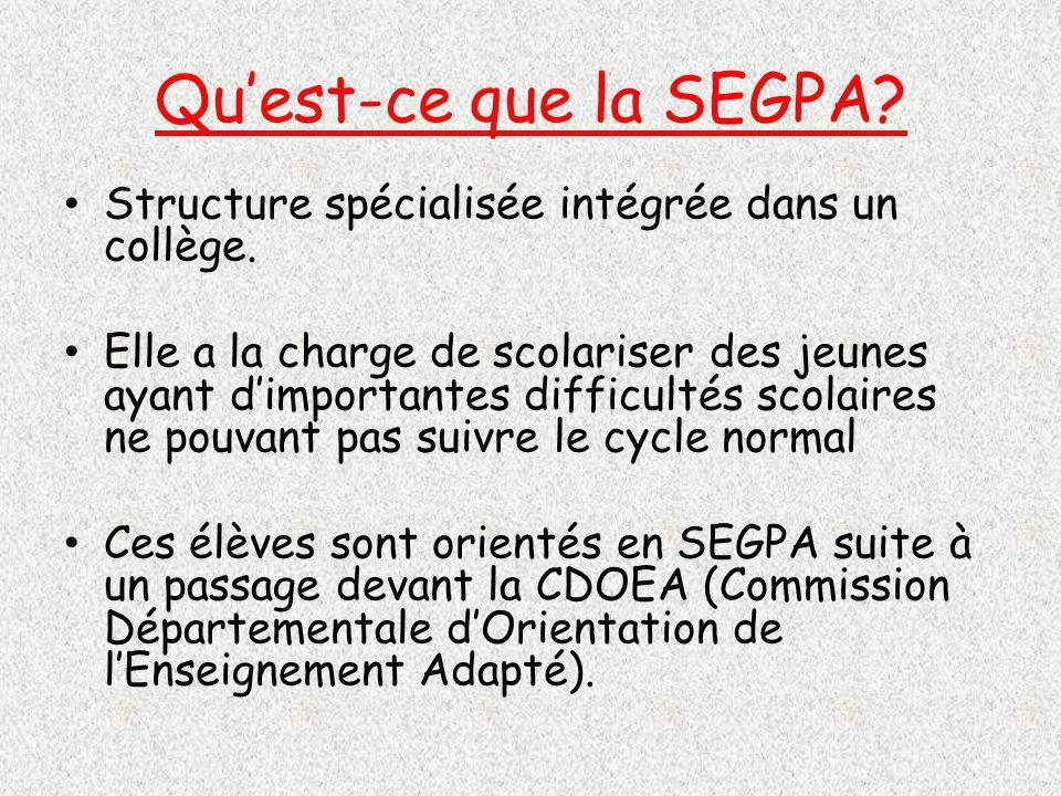 Qu'est-ce que la SEGPA Structure spécialisée intégrée dans un collège.