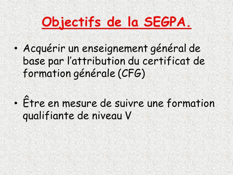Objectifs de la SEGPA. Acquérir un enseignement général de base par l'attribution du certificat de formation générale (CFG)