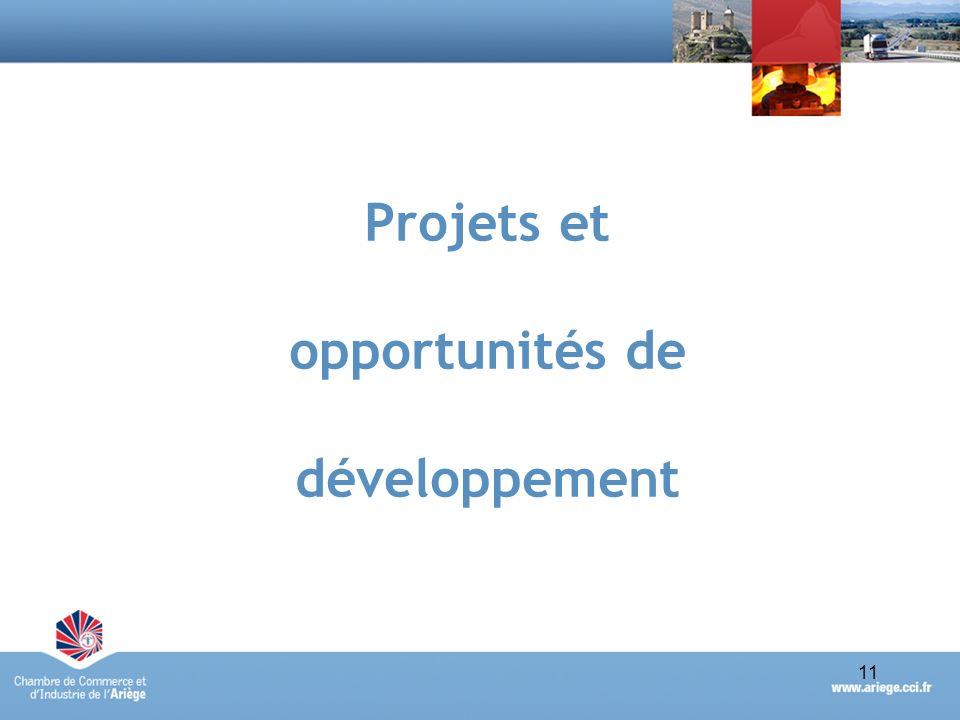 Projets et opportunités de développement