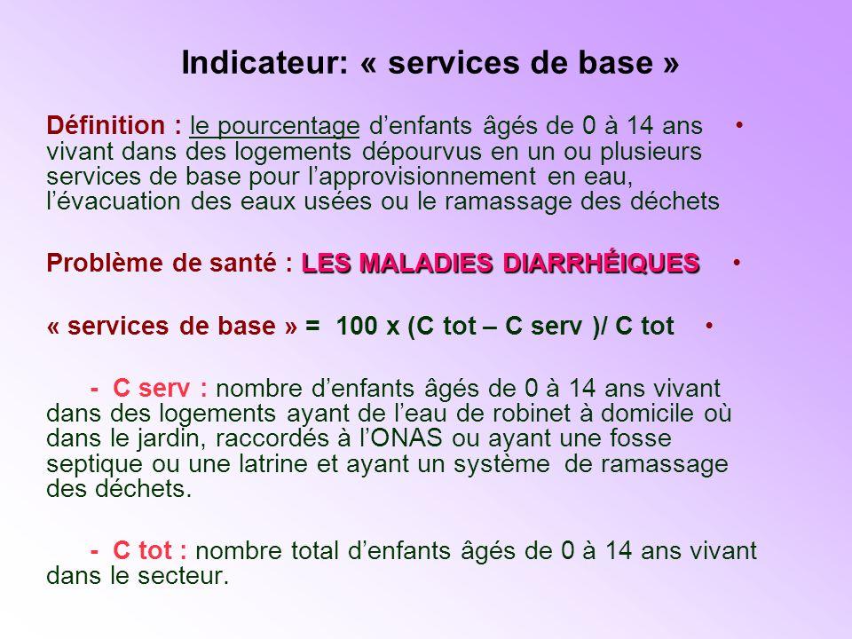 Indicateur: « services de base »