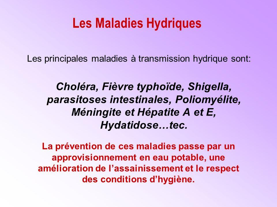 Les Maladies Hydriques
