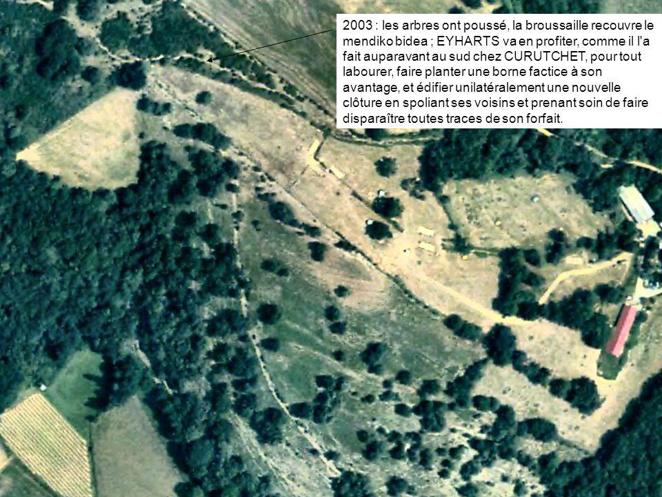 2003 : les arbres ont poussé, la broussaille recouvre le mendiko bidea ; EYHARTS va en profiter, comme il l a fait auparavant au sud chez CURUTCHET, pour tout labourer, faire planter une borne factice à son avantage, et édifier unilatéralement une nouvelle clôture en spoliant ses voisins et prenant soin de faire disparaître toutes traces de son forfait.