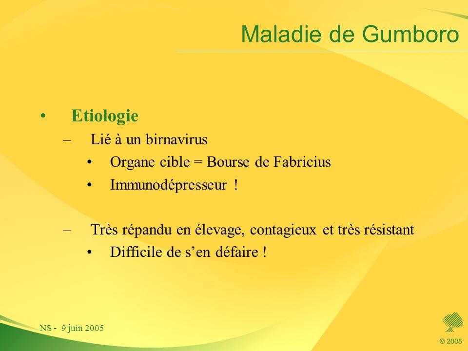Maladie de Gumboro Etiologie Lié à un birnavirus