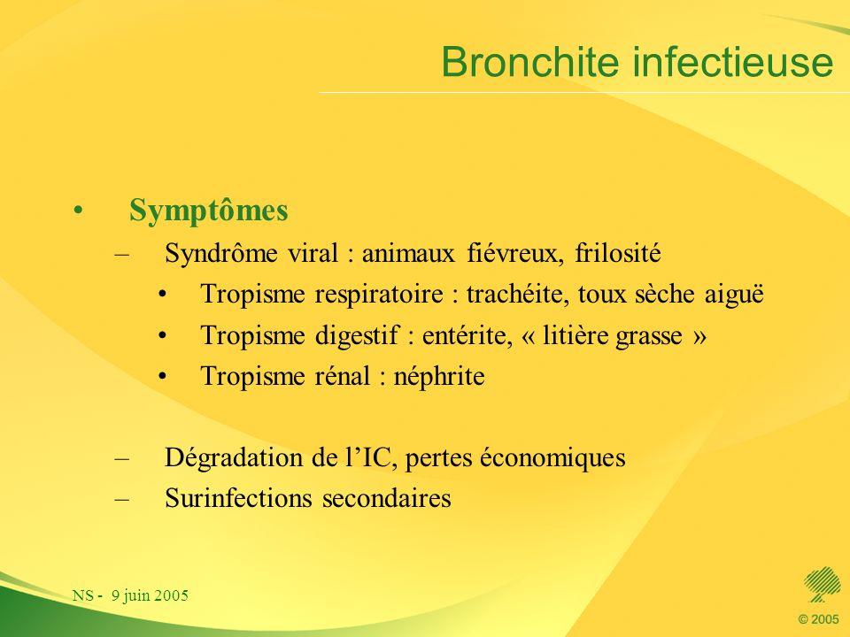 Bronchite infectieuse