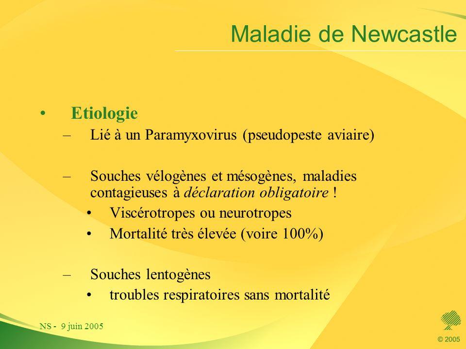 Maladie de Newcastle Etiologie
