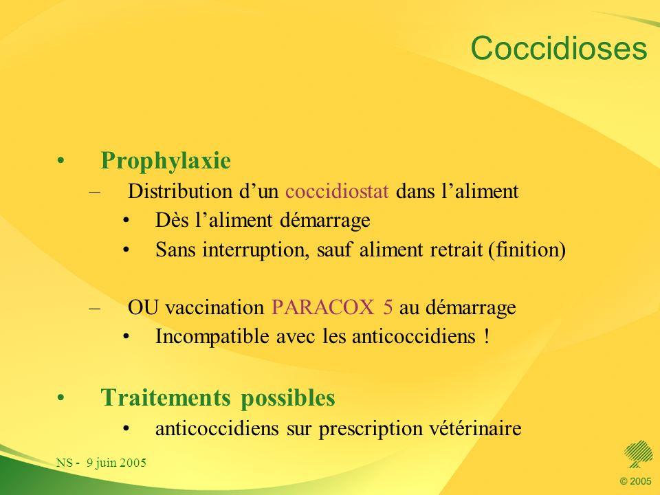 Coccidioses Prophylaxie Traitements possibles