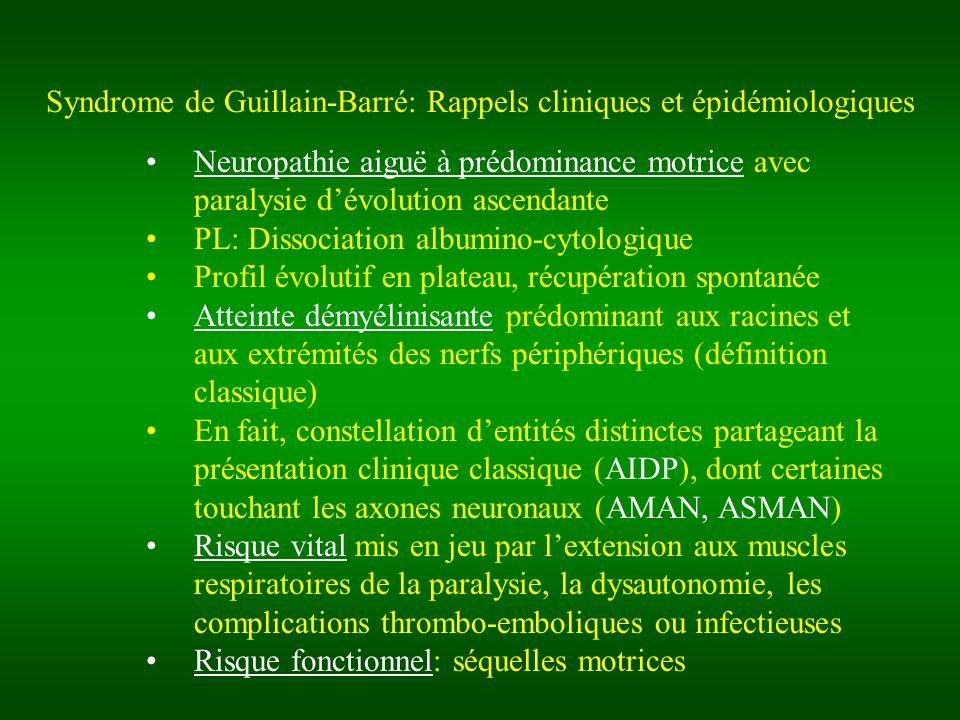 Syndrome de Guillain-Barré: Rappels cliniques et épidémiologiques