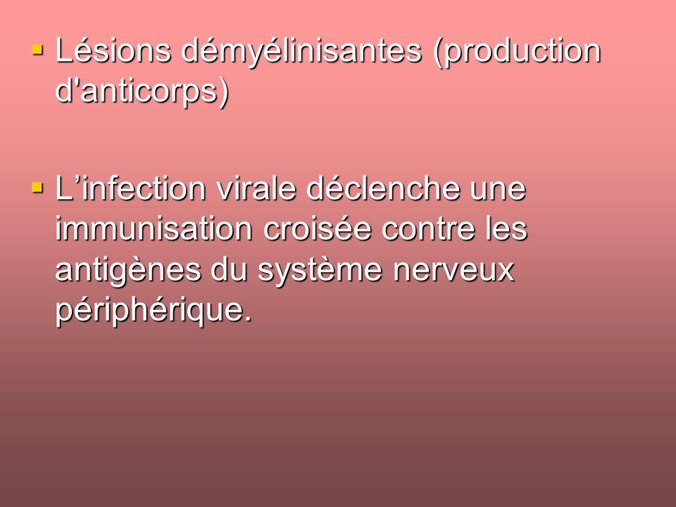 Lésions démyélinisantes (production d anticorps)