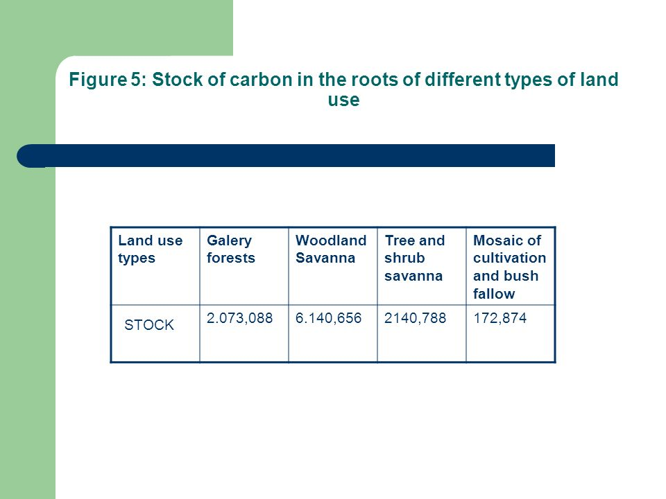Figure 5: Stock of carbon in the roots of different types of land use