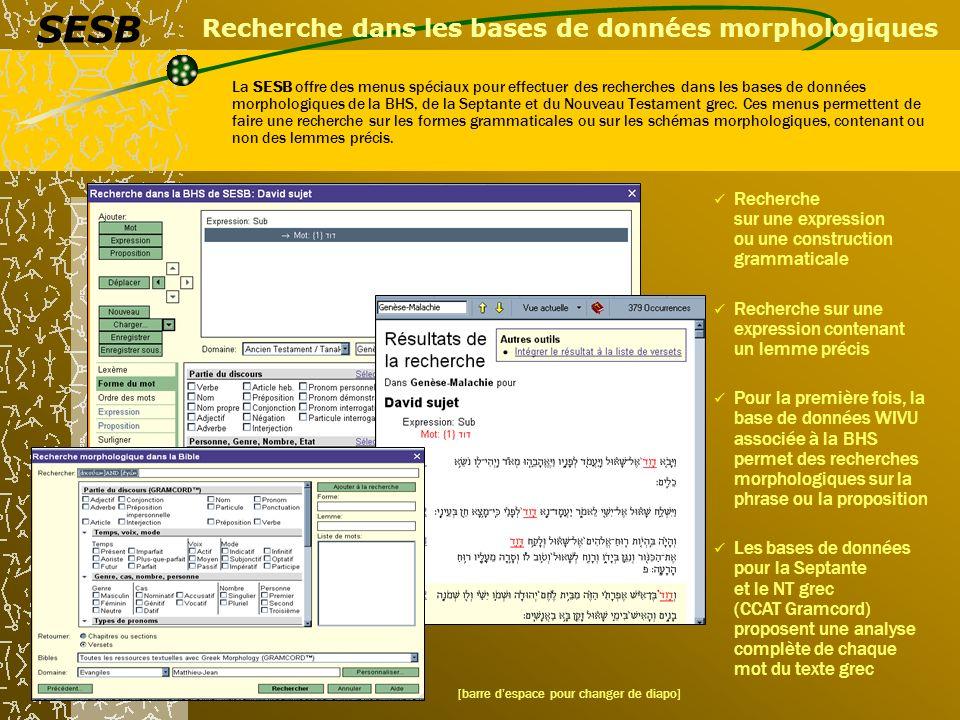 Recherche dans les bases de données morphologiques