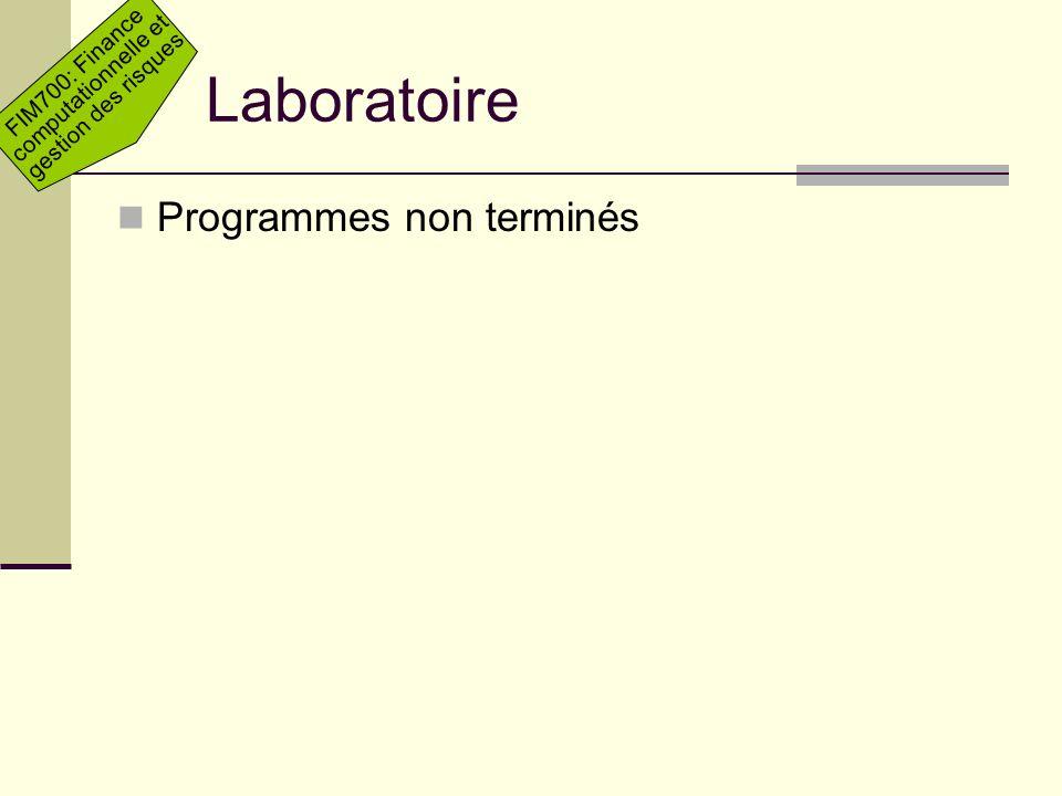 Laboratoire Programmes non terminés