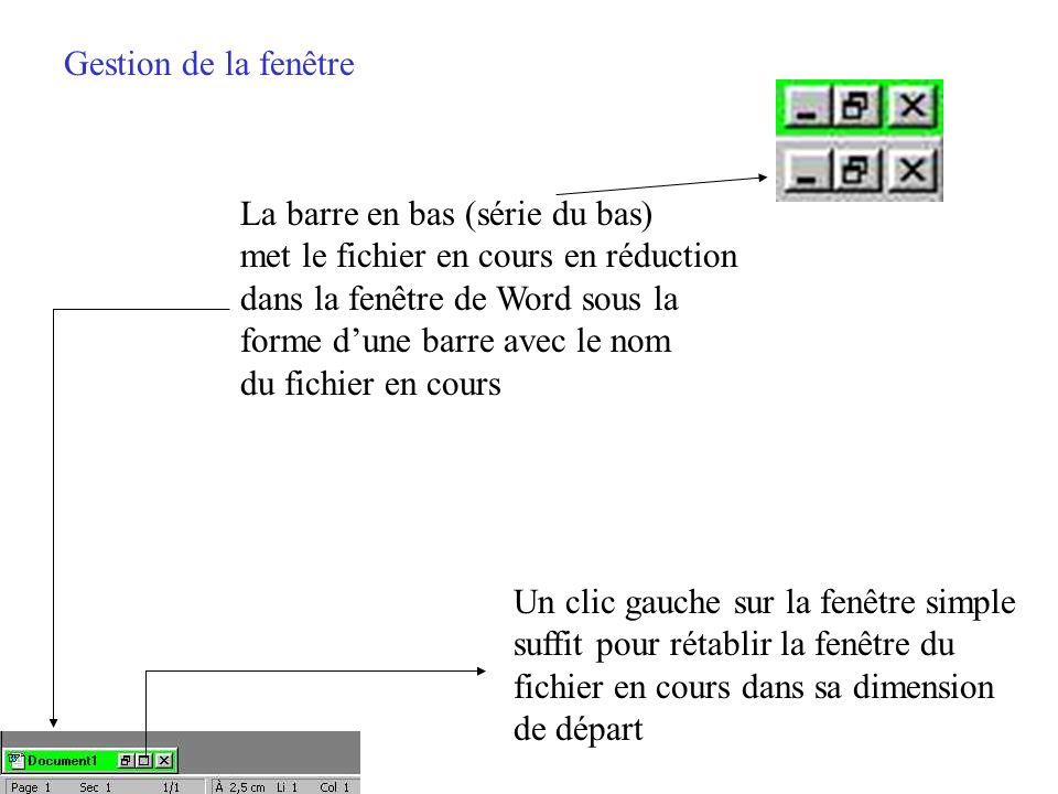 Gestion de la fenêtre La barre en bas (série du bas) met le fichier en cours en réduction. dans la fenêtre de Word sous la.