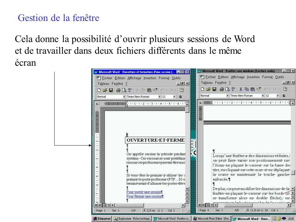 Gestion de la fenêtre Cela donne la possibilité d'ouvrir plusieurs sessions de Word. et de travailler dans deux fichiers différents dans le même.