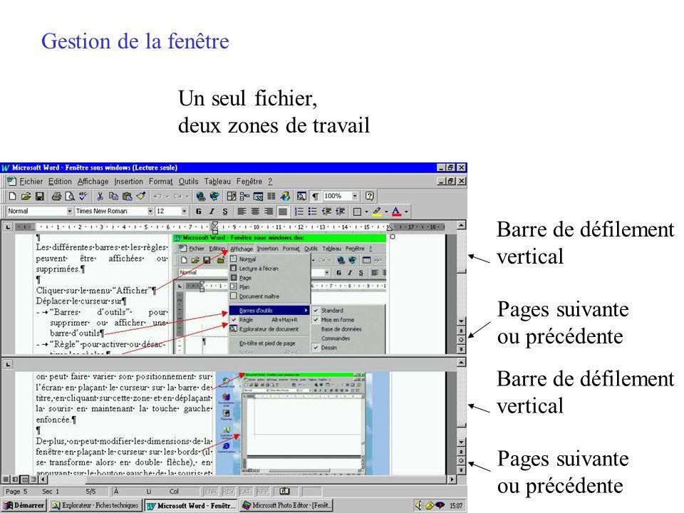 Gestion de la fenêtre Un seul fichier, deux zones de travail. Barre de défilement. vertical. Pages suivante.