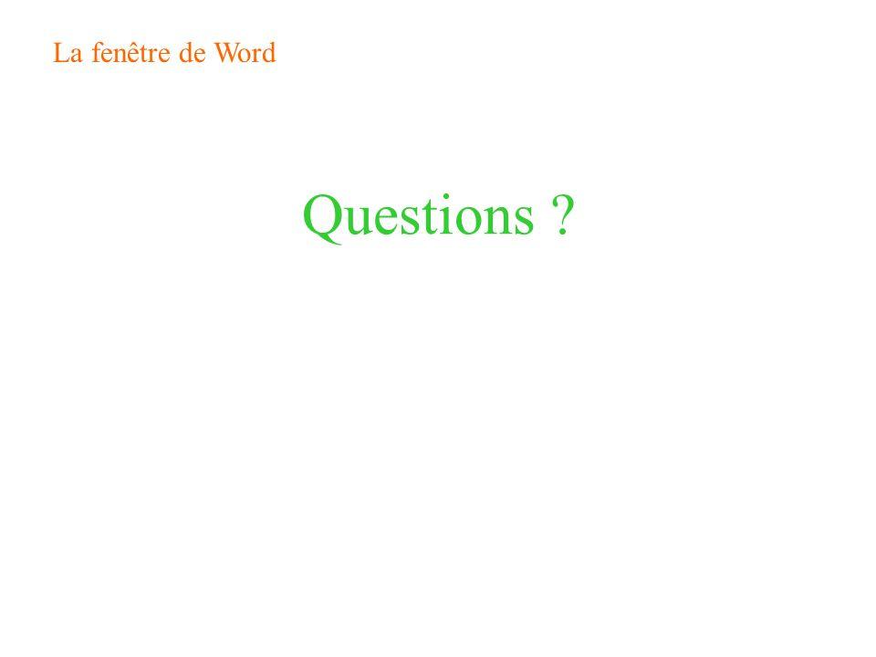 La fenêtre de Word Questions