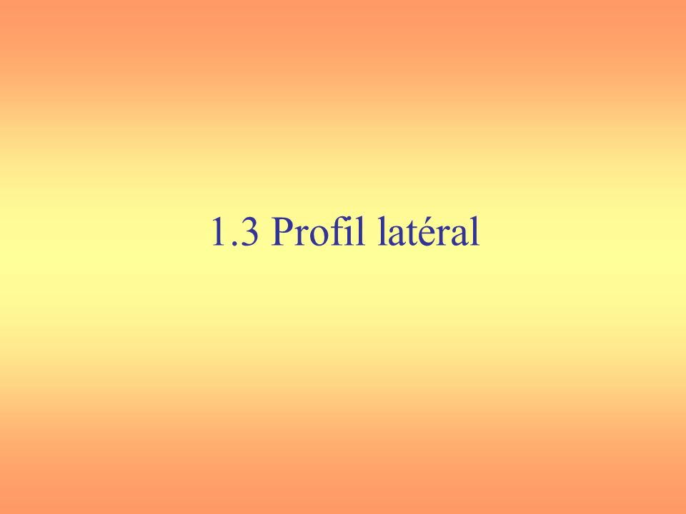 1.3 Profil latéral