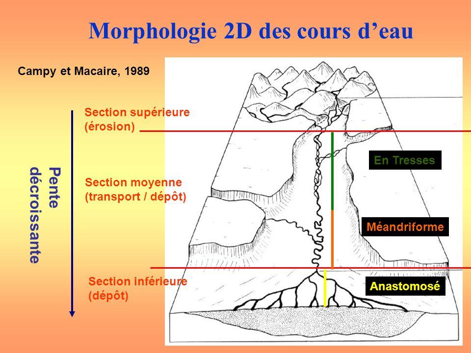 Morphologie 2D des cours d'eau