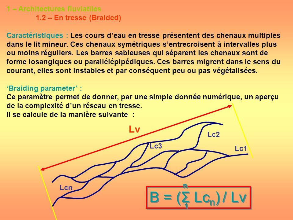 B = (Σ Lcn) / Lv Lv 1 – Architectures fluviatiles