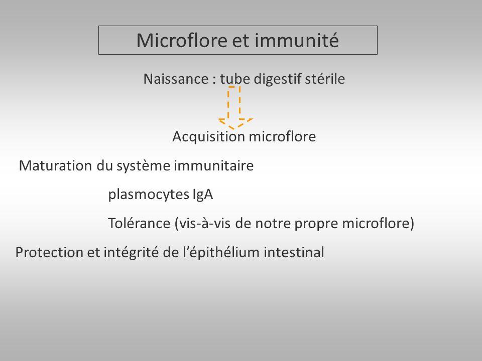 Microflore et immunité