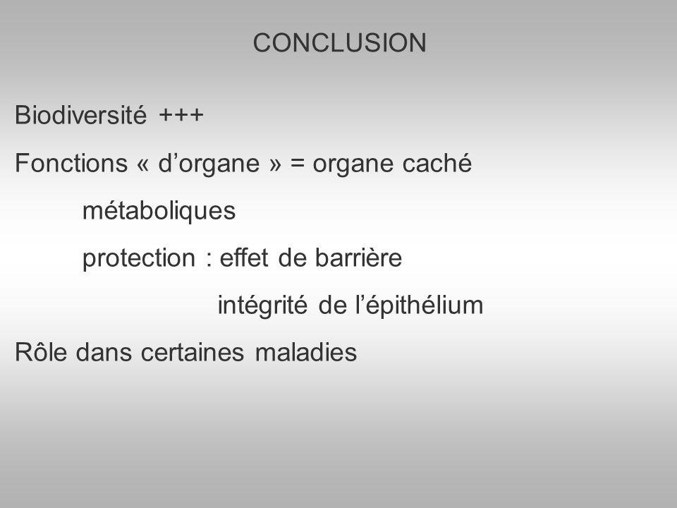 CONCLUSION Biodiversité +++ Fonctions « d'organe » = organe caché. métaboliques. protection : effet de barrière.