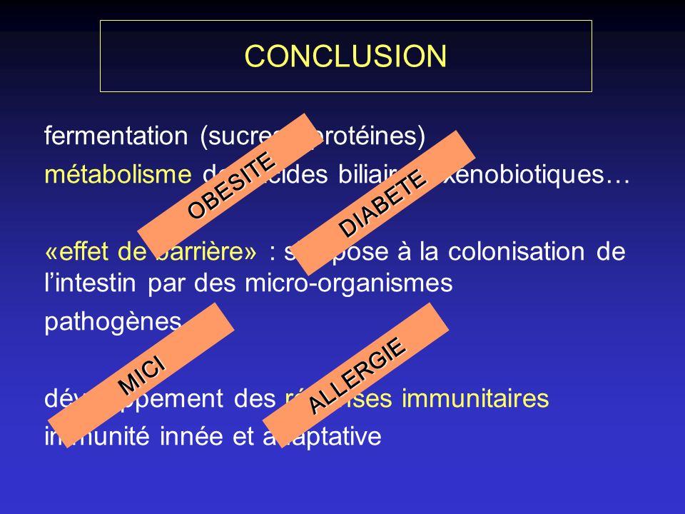 CONCLUSION fermentation (sucres / protéines)