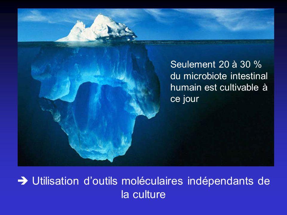  Utilisation d'outils moléculaires indépendants de la culture