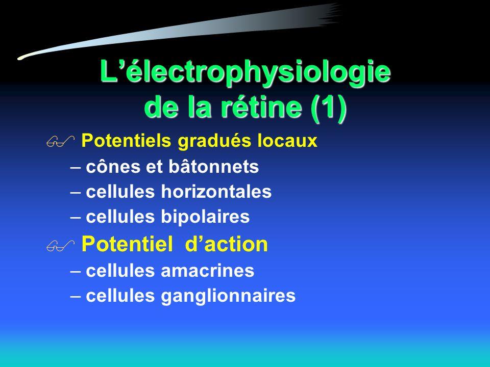 L'électrophysiologie de la rétine (1)