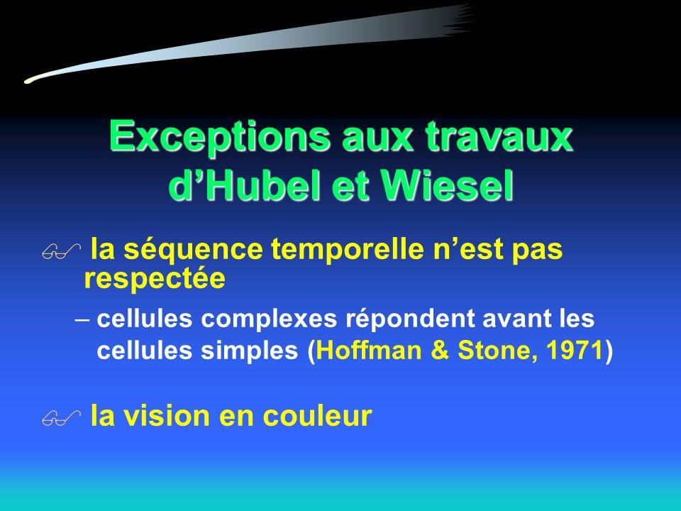 Exceptions aux travaux d'Hubel et Wiesel
