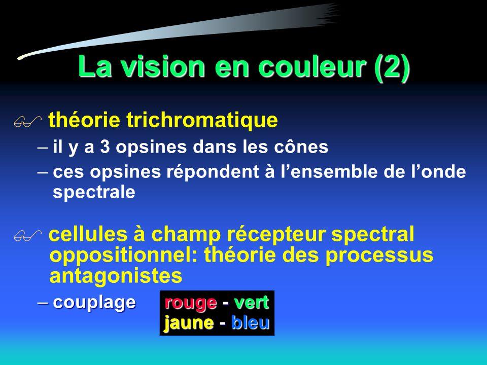 La vision en couleur (2) théorie trichromatique