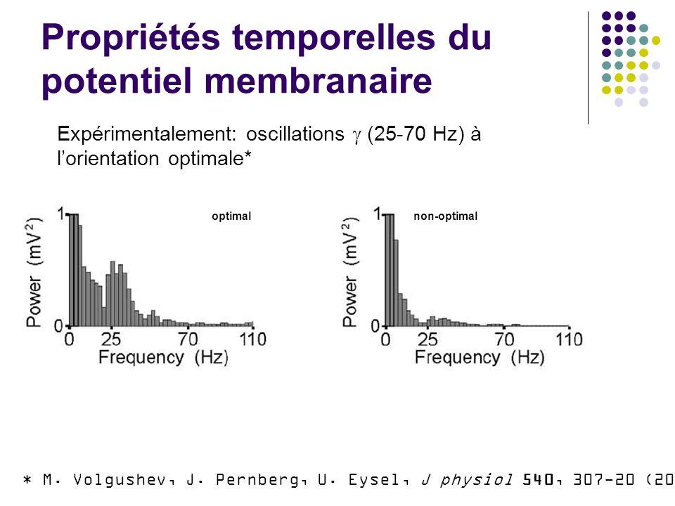 Propriétés temporelles du potentiel membranaire