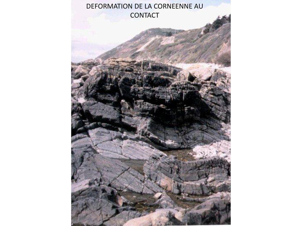 DEFORMATION DE LA CORNEENNE AU CONTACT