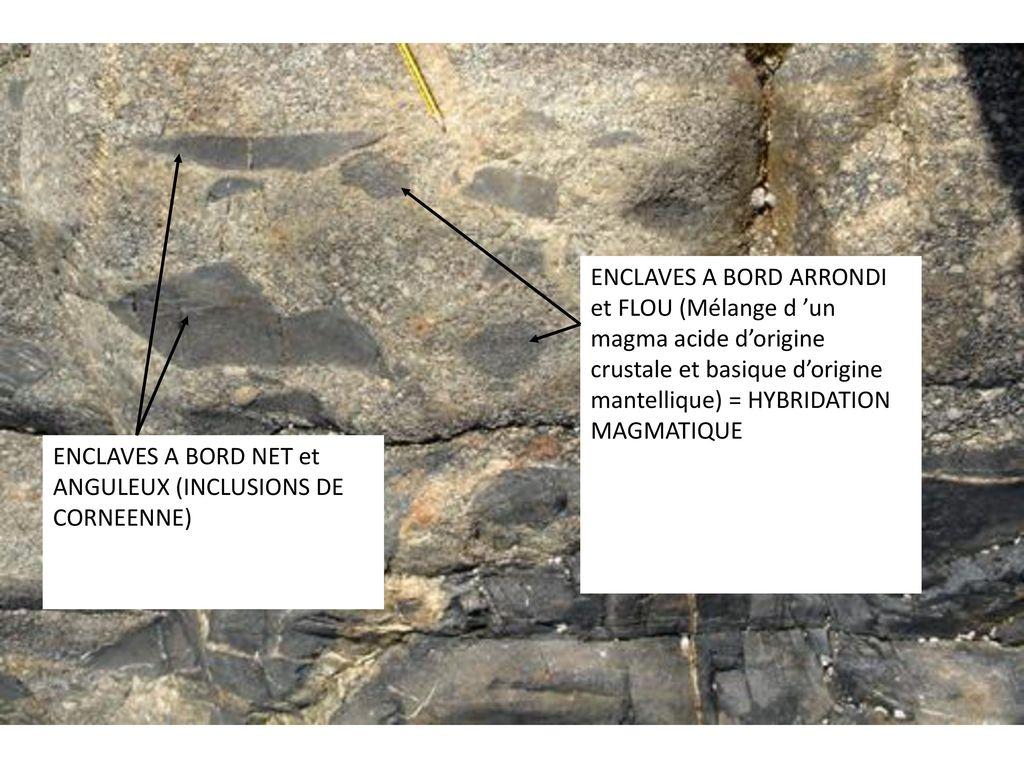 ENCLAVES A BORD ARRONDI et FLOU (Mélange d 'un magma acide d'origine crustale et basique d'origine mantellique) = HYBRIDATION MAGMATIQUE