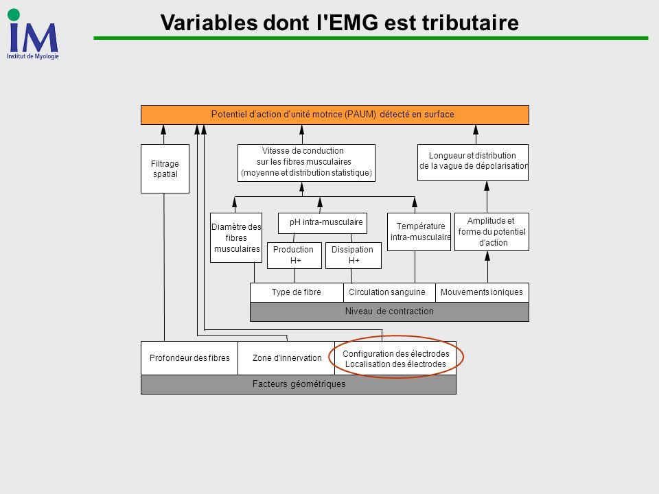Variables dont l EMG est tributaire