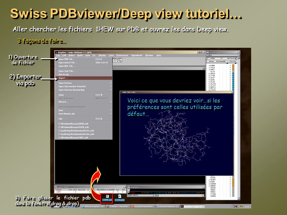 Swiss PDBviewer/Deep view tutoriel…