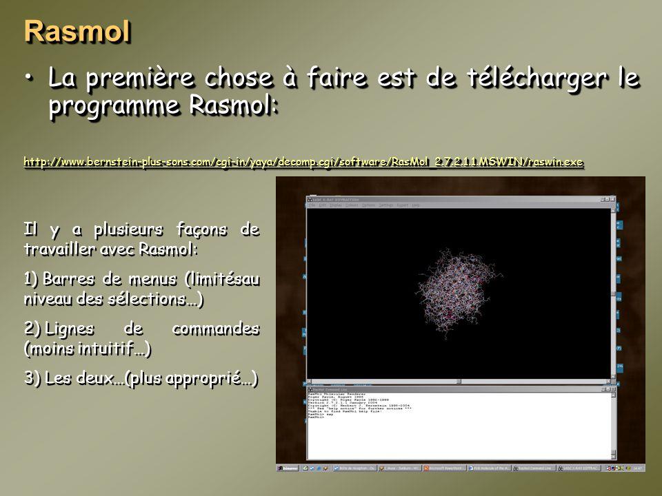 Rasmol La première chose à faire est de télécharger le programme Rasmol: