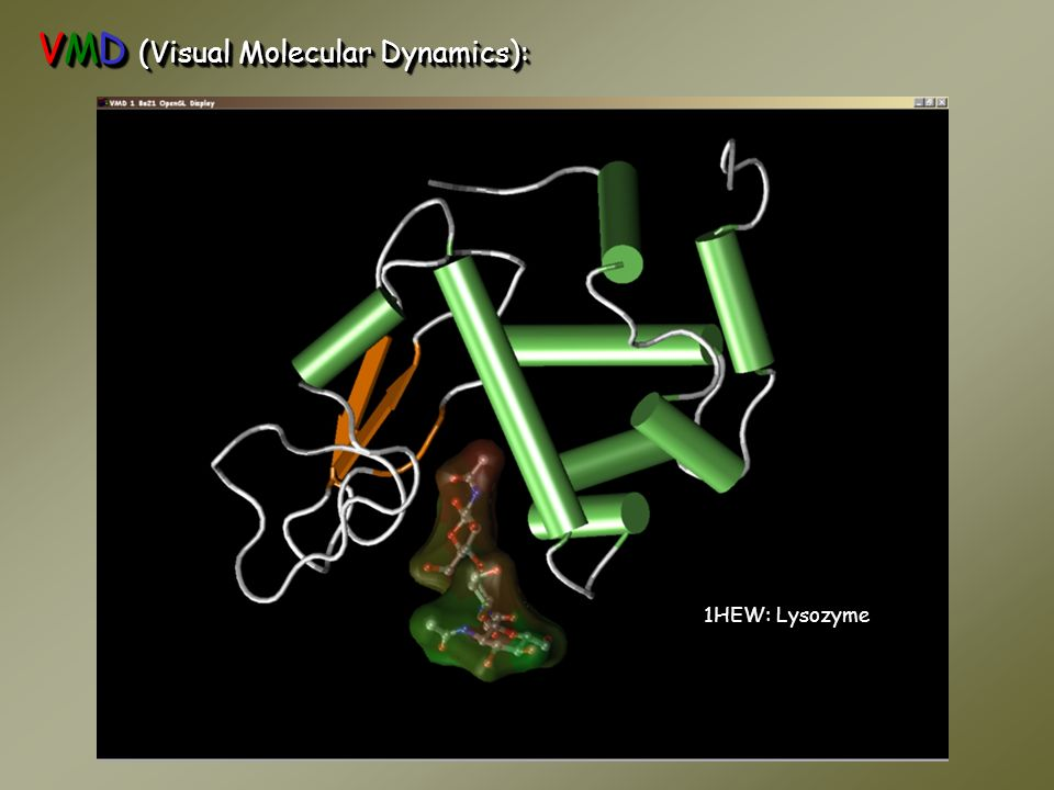 VMD (Visual Molecular Dynamics):