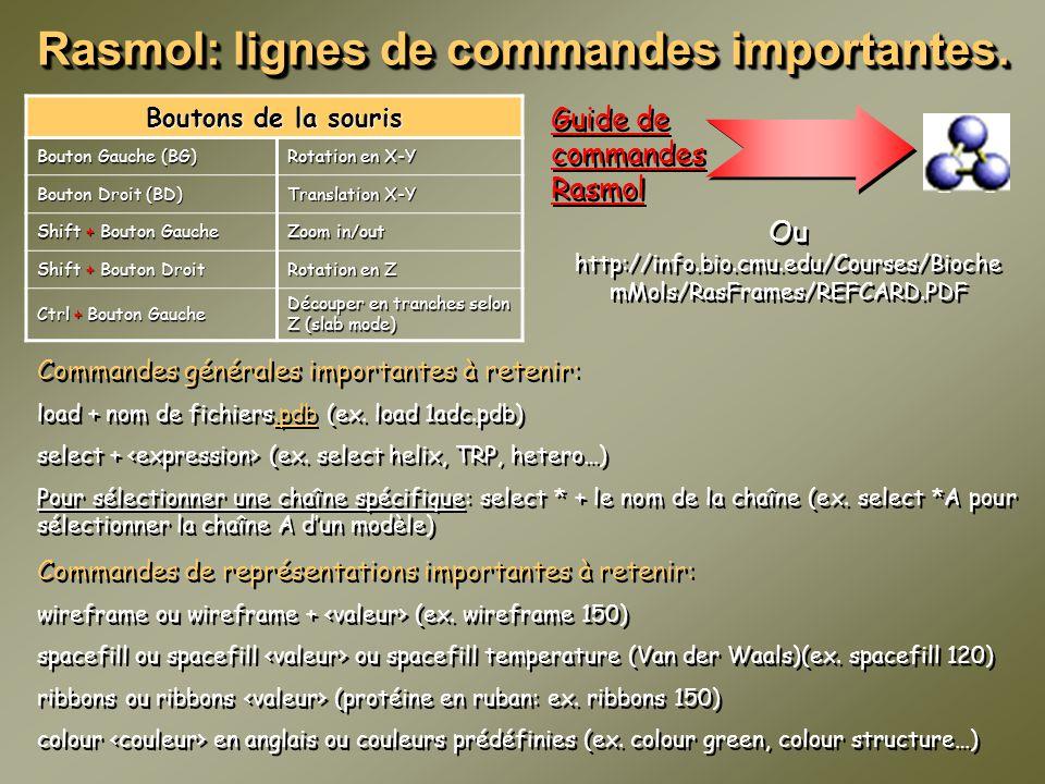 Rasmol: lignes de commandes importantes.