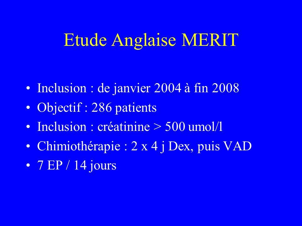 Etude Anglaise MERIT Inclusion : de janvier 2004 à fin 2008